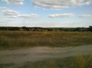 A dry, abandoned field. This would have been full of crops in the farm's productive days